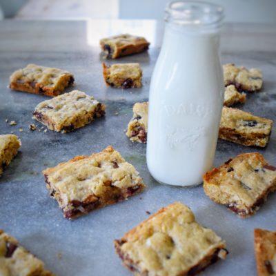 Loaded Oatmeal Cookie Bars