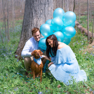 Gender Reveal and First Trimester Update